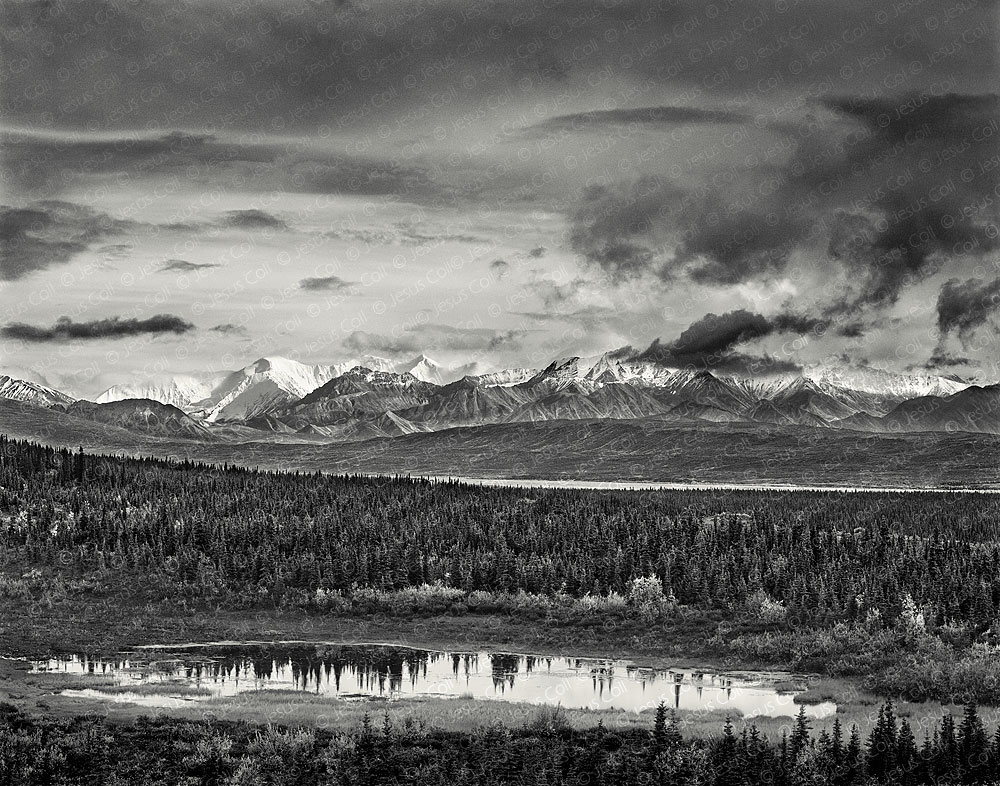 Storm on the Range, Denali Nat'l. Park, Alaska, USA. Landscapes Fine Art Black and White Photography by Jesus Coll