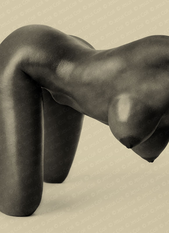 Black Body I. Fine Art Nude B&W Photography by Jesus Coll