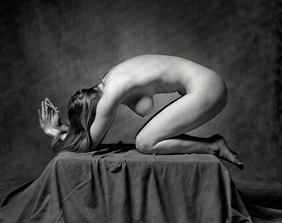 Twisted Nude. Fine Art Nude Photography by Jesus Coll