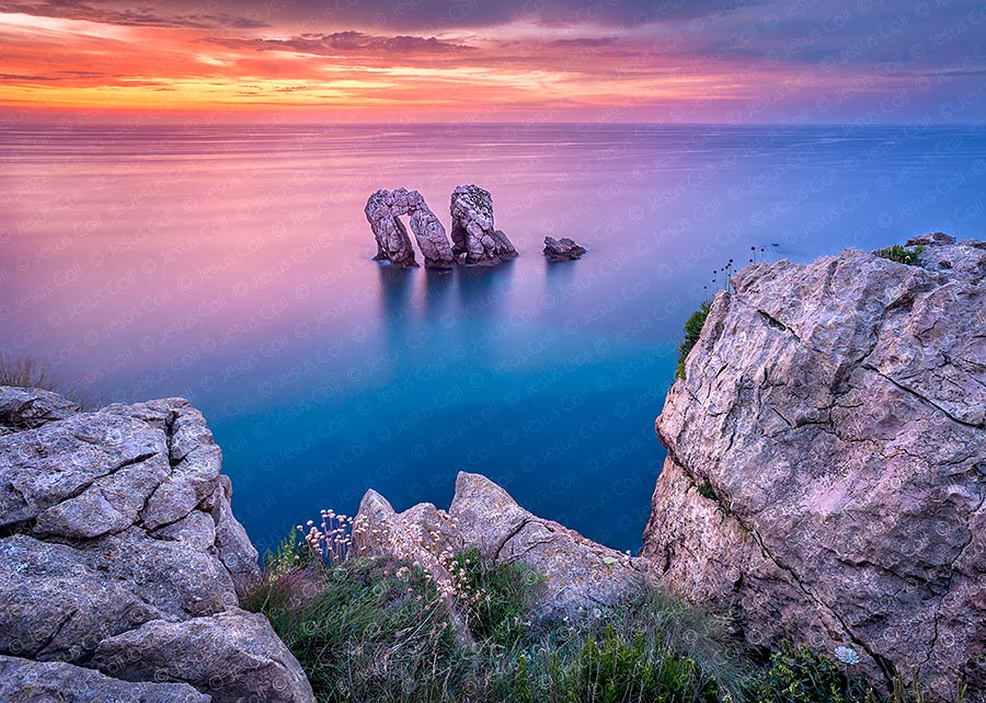 El Manzano, Liencres, Cantabria, Spain. Fine Art Natural Landscapes color photography by Jesus Coll
