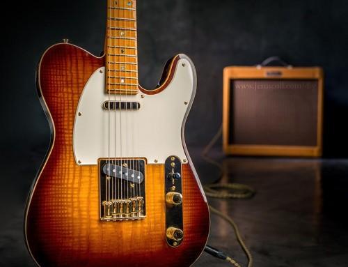 Guitarra Eléctrica Telecaster Thinline